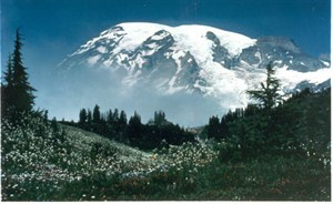 mount rainier uses custom air filter solutions