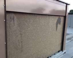 6 Reasons Why You Need to Install Cottonwood Filter Screens Now